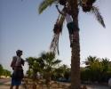 0721_Ägypten_079