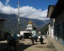 nepal2004-3-von-42
